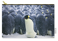 Emperor Penguin Trying To Get Carry-all Pouch by Frederique Olivier