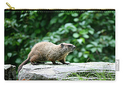 Enter Groundhog Carry-all Pouch by Neal Eslinger