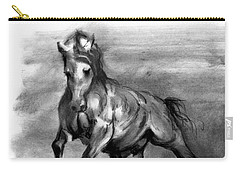 Equine IIi Carry-all Pouch