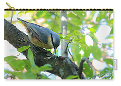 Eurasian Nuthatch - Sitta Europaea Carry-all Pouch