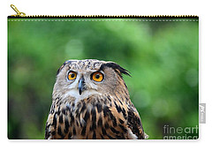 Eurasian Or European Eagle Owl Bubo Bubo Stares Intently Carry-all Pouch