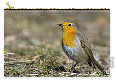 European Robin Carry-all Pouch by Torbjorn Swenelius