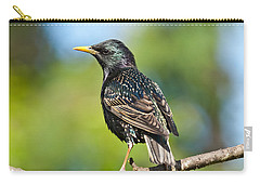 European Starling In A Tree Carry-all Pouch