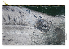 Eye Of A Young Gray Whale Carry-all Pouch by Don Schwartz
