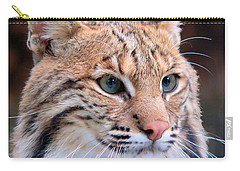 Eyes Of A Lynx Carry-all Pouch by Rosalie Scanlon
