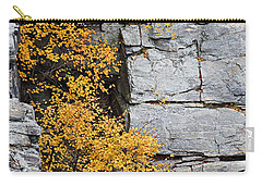 Fall Foliage Colors 01 Carry-all Pouch