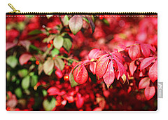 Fall Foliage Colors 10 Carry-all Pouch