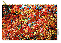 Fall Foliage Colors 22 Carry-all Pouch