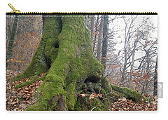 Carry-all Pouch featuring the photograph Fall In Burgdorf by Felicia Tica