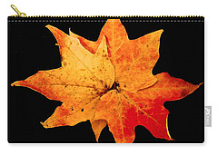 Carry-all Pouch featuring the photograph Fall Leaf Trio by Dee Dee  Whittle