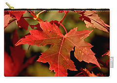 Fall Red Beauty Carry-all Pouch