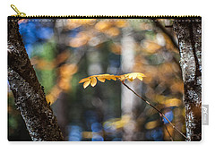 Fall Suspended Carry-all Pouch by Aaron Aldrich