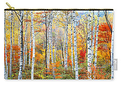 Fall Trees, Shinhodaka, Gifu, Japan Carry-all Pouch