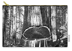 Logging Photographs Carry-All Pouches