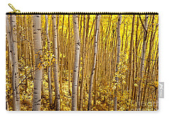 Fall's Golden Light Carry-all Pouch by Steven Reed