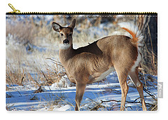 Carry-all Pouch featuring the photograph Fancy Pants by Jim Garrison