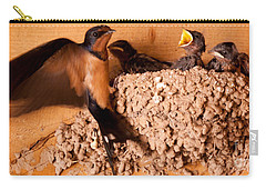 Carry-all Pouch featuring the photograph Feeding Time by Roselynne Broussard