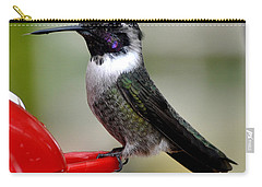 Carry-all Pouch featuring the photograph Male Anna On Feeder Perch Posing by Jay Milo
