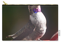 Carry-all Pouch featuring the photograph Female Anna On Perch by Jay Milo