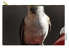 Carry-all Pouch featuring the photograph Female Anna Hummingbird by Jay Milo