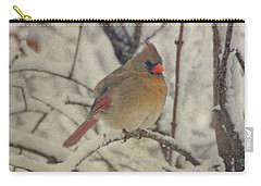 Female Cardinal In The Snow II Carry-all Pouch by Sandy Keeton