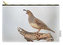 Female Gambel's Quail Carry-all Pouch by Bryan Keil
