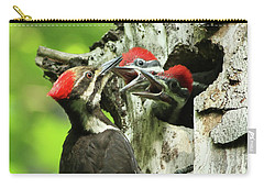 Female Pileated Woodpecker At Nest Carry-all Pouch by Mircea Costina Photography