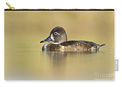 Carry-all Pouch featuring the photograph Female Ring Necked Duck by Bryan Keil