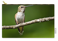 Carry-all Pouch featuring the photograph Female Rufous Hummingbird In A Tree by Jeff Goulden