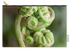 Fern Bud Carry-all Pouch by Venetia Featherstone-Witty