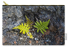 Ferns In Volcanic Rock Carry-all Pouch