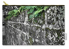 Ferns On Old Brick Wall Carry-all Pouch