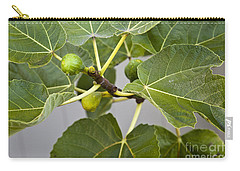 Carry-all Pouch featuring the photograph Figalicious by David Millenheft