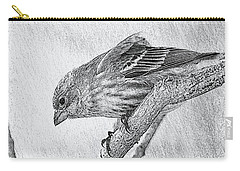 Finch Digital Sketch Carry-all Pouch