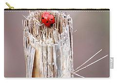 Fine Art- Ladybird Carry-all Pouch