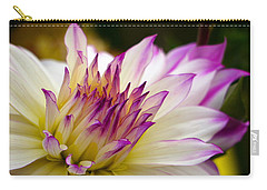 Carry-all Pouch featuring the photograph Fire And Ice - Dahlia by Jordan Blackstone