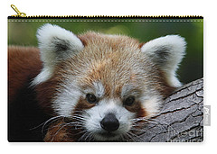 Carry-all Pouch featuring the photograph Fire Fox by Judy Whitton