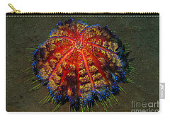 Carry-all Pouch featuring the photograph Fire Sea Urchin by Sergey Lukashin
