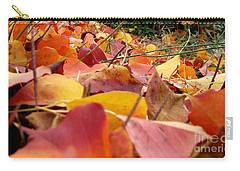 Carry-all Pouch featuring the photograph First Day Of Fall by Andrea Anderegg
