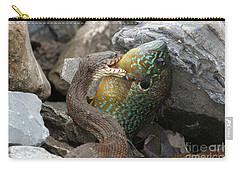 Fishing Carry-all Pouch by Jeannette Hunt