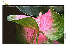 Flamingo Flower Carry-all Pouch by Byron Varvarigos