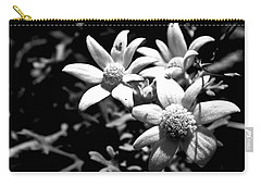 Carry-all Pouch featuring the photograph Flannel Flower by Miroslava Jurcik