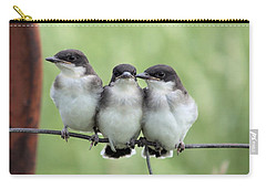 Fledged Siblings Carry-all Pouch