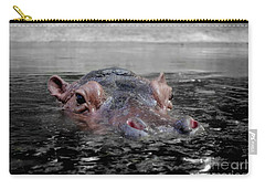 Carry-all Pouch featuring the photograph Flooding by Michelle Meenawong