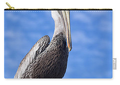 Florida Brown Pelican Carry-all Pouch