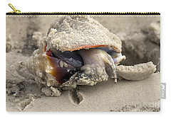 Carry-all Pouch featuring the photograph Florida Fighting Conch by Meg Rousher