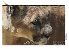 Carry-all Pouch featuring the photograph Florida Panther by Meg Rousher