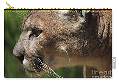Carry-all Pouch featuring the photograph Florida Panther Profile by Meg Rousher