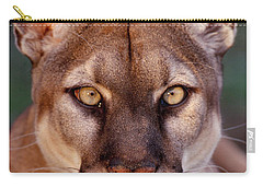 Florida Panther Carry-all Pouch by Tom and Pat Leeson