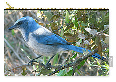 Florida Scrub Jay Carry-all Pouch